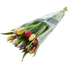 Fleurs - Bouquet de 10 tulipes arlequin 1 pièce