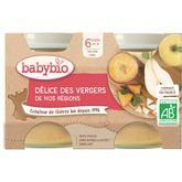 Babybio Babybio Petit pot dessert délices des vergers dès 6 mois 2x130g