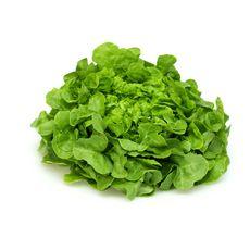 Salade feuille de chêne blonde 1 pièce