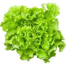 Salade batavia bio 1 pièce