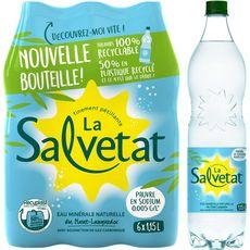 Salvetat Eau finement pétillante pauvre en sodium 6x1,15l