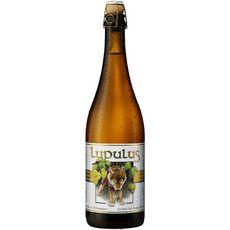 LUPULUS Bière blonde triple 8,5% 75cl