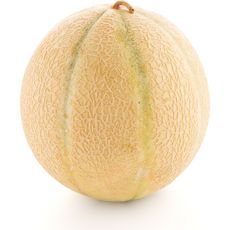 Melon 1er prix pièce