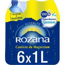 ROZANA Eau minérale gazeuse naturelle 6x1l