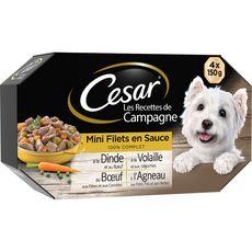 CESAR Assortiment barquettes filets sauce viandes légumes pour chien 4x150g