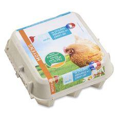 AUCHAN Auchan oeuf de poules élevées en plein air sans ogm x9