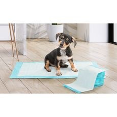 Idomya E. Lot de 100 tapis éducateurs pour chiens