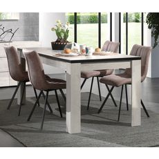 Table de séjour salle à manger fixe L160cm ALBA