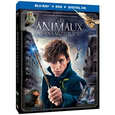 Les Animaux fantastiques - Blu ray + DVD
