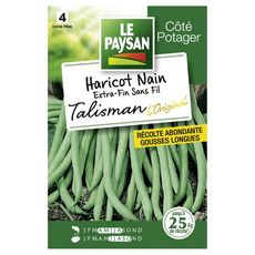 LE PAYSAN Semence potagère haricot talisman x1 1 pièce